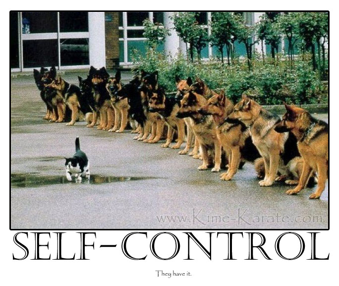 Teaching Self Control | Kime Karate