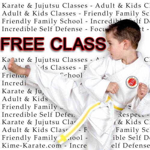 Free Karate or Jiu Jitsu Class